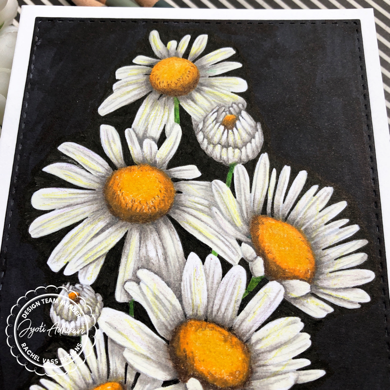 Sunshine Daisies by Rachel Vass Designs pencil coloring